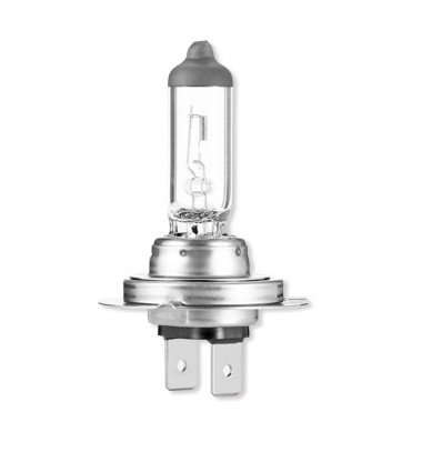 H7 Light bulb