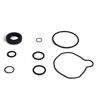 Watertightness kit, power steering pump, Suzuki Santana Samurai, 413