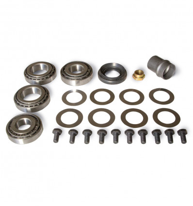 Differential carrier roller bearing kit